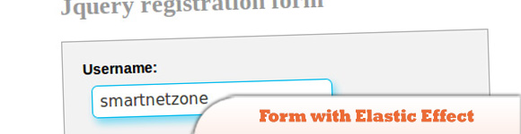 Registration Form with Elastic Effect